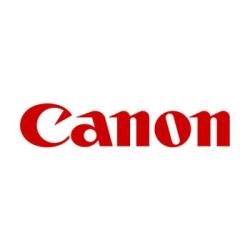 NewStar FPMA-C100SILVER LCD/LED/TFT ceiling mount